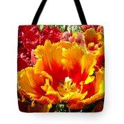 Spring Tulip Flowers Art Prints Yellow Red Tulip Tote Bag