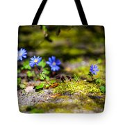 Spring Wild Flowers Tote Bag