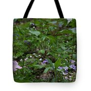 Spring Wildflowers Along Panther Branch Trail Frozen Head Tennessee State Park Tennessee Tote Bag