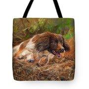 Springer Spaniel 2 Tote Bag