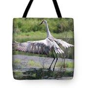 Springing Sandhill Crane Tote Bag