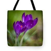 Springs Blossoms Tote Bag