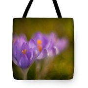 Springs Delicate Richness Tote Bag by Mike Reid