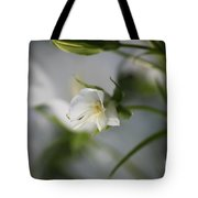 Spring's Late Bloom Tote Bag