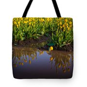 Springs Reflection Tote Bag