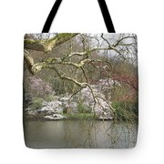 Springtime At The Pond Tote Bag