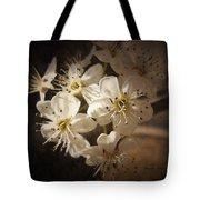 Springtime Blossoms Tote Bag