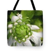 Springtime Bud Tote Bag