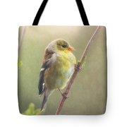 Springtime Goldfinch Tote Bag