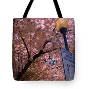 Springtime In Charlotte Tote Bag by Lydia Holly