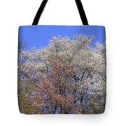 Springtime In Great Balsam Mountains Tote Bag