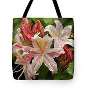 Springtime In Oregon  Tote Bag