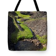 Springtime In The Foothills Tote Bag