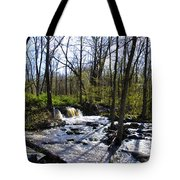 Springtime In The Mountains Tote Bag