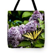 Springtime Lilac And Butterfly Tote Bag