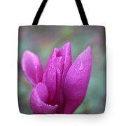 Springtime Magnolia Blossom Tote Bag