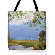 Springtime Moraine Park Tote Bag