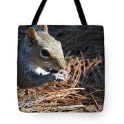 Springtime Nutcracker Tote Bag