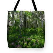 Springtime On The Grand Mesa Tote Bag