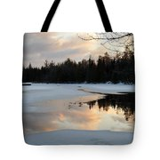 Springtime Reflection Tote Bag