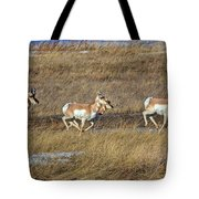 Sprinting Pronghorn Tote Bag