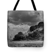 Sprogoe Lighthouse Tote Bag by Robert Lacy