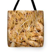 Sprouting Russian Banana Fingerling Seed Potatoes Tote Bag