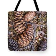 Spruce Cones Tote Bag