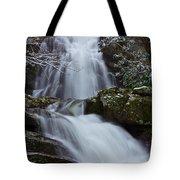 Spruce Flats Falls IIi Tote Bag