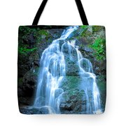Spruce Flats Orchestra Tote Bag