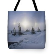 Spruce Forest With Sundogs Hudson Bay Tote Bag