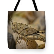 Spur-throated Grasshopper Tote Bag