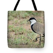 Spur-winged Lapwing Tote Bag