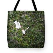 Squabbling Birds Tote Bag