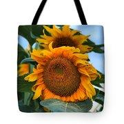 Squamish Sunflower Portrait Tote Bag