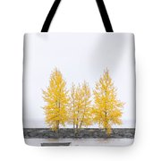 Square Tree Tote Bag