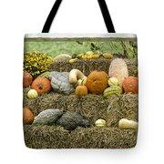 Squash Gourds And Pumpkins Tote Bag