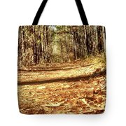 Squirel's View Tote Bag
