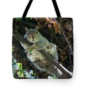 Squirrel By Nest Tote Bag