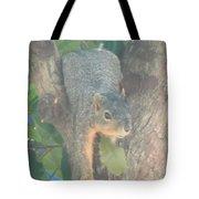 Squirrel Chillin Tote Bag