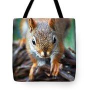 Squirrel Close-up Tote Bag