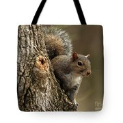 Squirrel Tote Bag