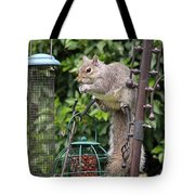 Squirrel Eating Nuts Tote Bag