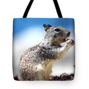 Squirrel Enjoying Lunch On The Beach Tote Bag