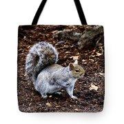 Squirrel In The Park-boston  V6 Tote Bag