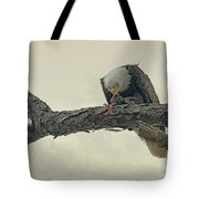 Squirrel Lunch Tote Bag