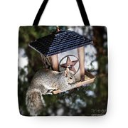 Squirrel On Bird Feeder Tote Bag by Elena Elisseeva