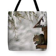 Squirrel On The Bird Feeder Tote Bag