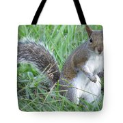 Squirrel On The Grass Tote Bag
