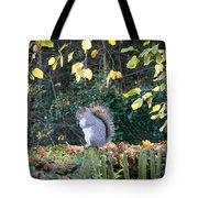 Squirrel Perched Tote Bag